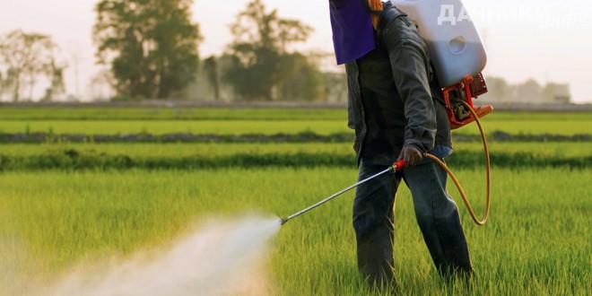 Вред, который может нанести бездумное применение химических средств, может вылиться в разные формы