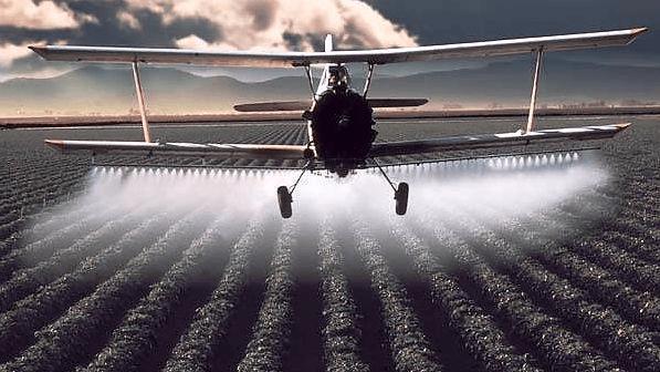 Вредное воздействие пестицидов
